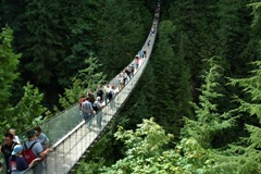 capilano suspension bridge, capilano bridge, bridges in vancouver, vancouver attractions, vancouver