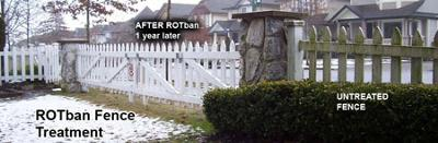 Fence Moss Removal ROTban