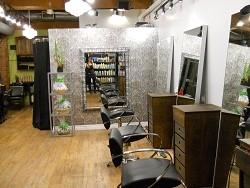 Citrus Hair Salon